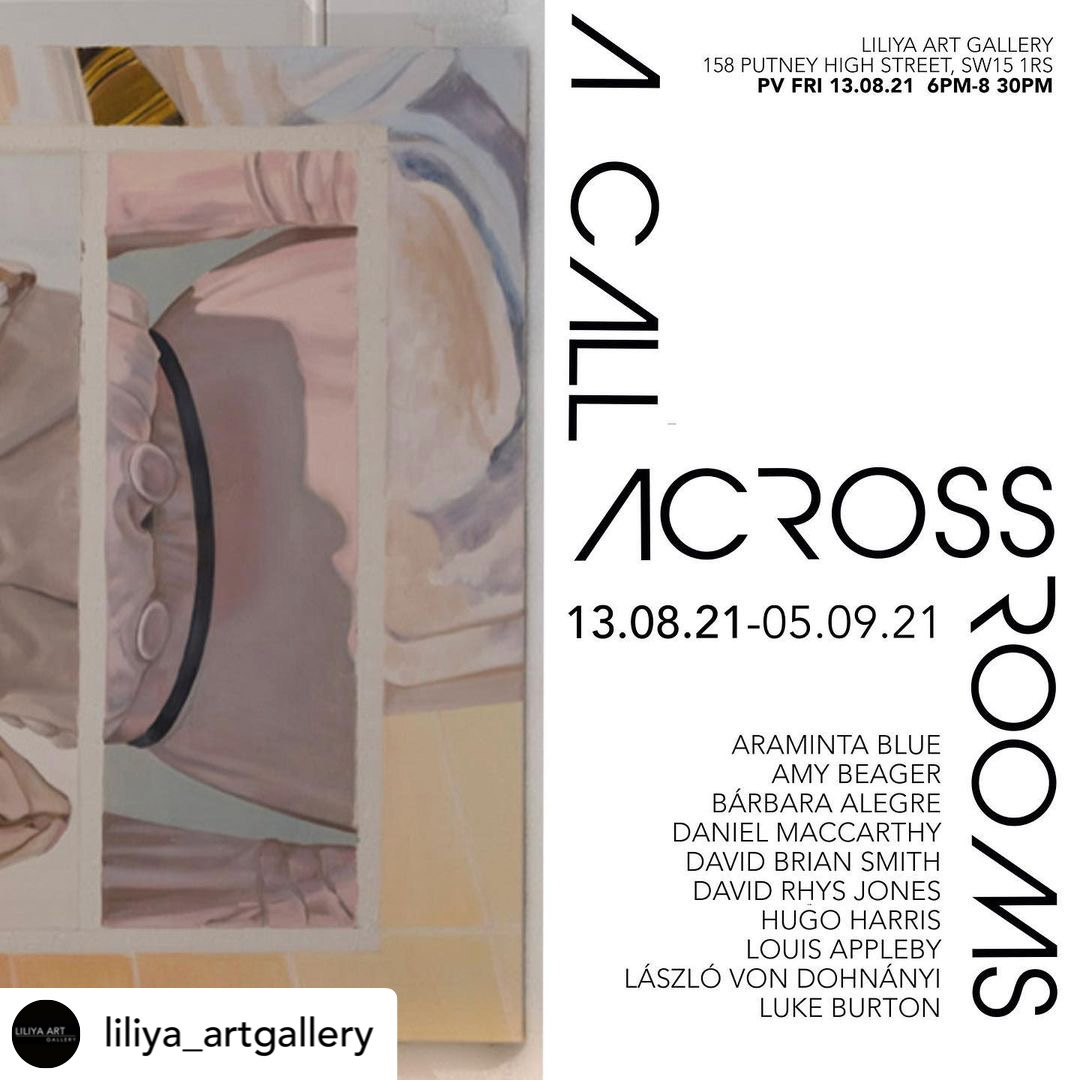'A call across rooms' at Liliya gallery